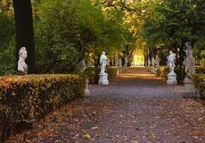 De weg van het park Royalty-vrije Stock Foto's
