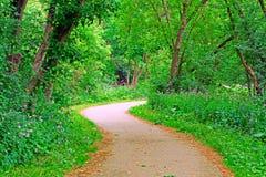 De weg van het park Stock Foto's