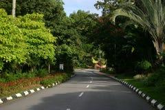 De weg van het park Royalty-vrije Stock Fotografie