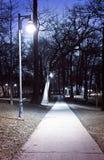 De weg van het park bij nacht royalty-vrije stock foto's