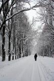 De weg van het parkeren in de winter. stock afbeelding