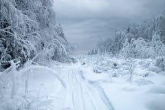 De weg van het sneeuwregistreren in Siberisch snow-covered en ijzig bos royalty-vrije stock afbeelding