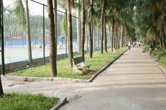 De weg van het stadspark Stock Foto's