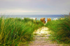 De weg van het strand aan de Oostzee Royalty-vrije Stock Afbeelding