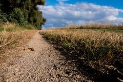De weg van het trekkingszandsteen met wolken op de blauwe hemel stock fotografie