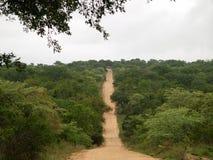 De weg van het zand in de Afrikaanse struik Royalty-vrije Stock Foto's