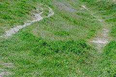 De weg van het de zomerlandschap op de heuvel Royalty-vrije Stock Foto