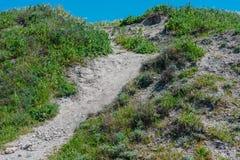 De weg van het de zomerlandschap op de heuvel Stock Foto