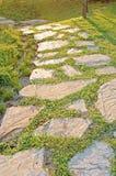 De weg van het zonlicht Stock Foto