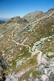 De weg van Moutain Royalty-vrije Stock Foto