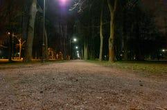 De weg van de nachtverlichting voor gangen in steeg in het licht van lantaarns Decoratief Klein Tuinlicht, Lantaarns in Bloembed  royalty-vrije stock foto