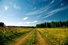 De weg van ?ountry Stock Fotografie