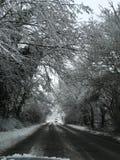 De Weg van de sneeuwboom stock afbeeldingen