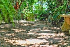 De weg van de steengang in tuin de zomer en tuinconcept stock foto