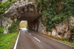 De weg van de steentunnel in berg scenary in Somiedo natuurreservaat, Asturias, Spanje royalty-vrije stock afbeeldingen
