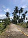 De weg van Thailand stock foto's