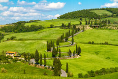 De weg van Toscanië met cipresbomen, Val d'Orcia, Italië royalty-vrije stock foto's