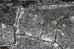 De weg van de tuinspringplank met steenbakstenen in diverse vormen stock afbeeldingen