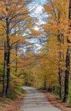 De weg van Vermont in de Herfst Stock Foto