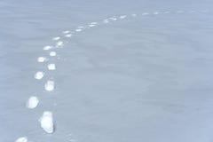 De weg van voetafdrukken in de sneeuw Royalty-vrije Stock Afbeelding