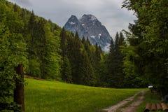 De weg van de wandeling in de Julian alpen royalty-vrije stock afbeeldingen