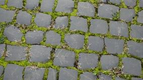 De weg wordt gemaakt van zwarte steen stock footage