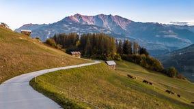 De wegalpen Autumn Switzerland Aerial 4k van de zonsondergangberg stock videobeelden