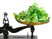 De weging van salade Stock Foto's