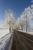 De weglandschap van de winter stock foto's