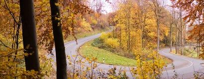 De wegpanorama van de herfst Stock Afbeeldingen