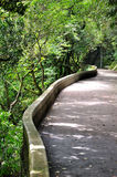 De wegrand van de kromme met groene installatie Royalty-vrije Stock Afbeelding