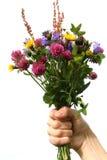 De weide bloeit boeket Stock Foto's