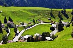 De weide van Alpian Stock Afbeeldingen