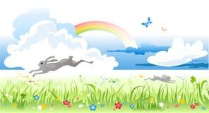 De weide van de lente Stock Foto