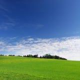 De weide van de lente en blauwe hemel royalty-vrije stock afbeeldingen