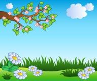 De weide van de lente met madeliefjes stock illustratie