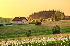 De weide van de lente met plattelandshuisje Stock Afbeelding