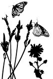 De Weide van de vlinder royalty-vrije stock afbeeldingen