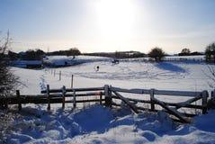De weide van de winter Stock Afbeelding