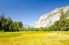 De Weide van de Yosemitevallei Stock Afbeelding