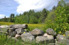 De Weide van Vermont Stock Afbeeldingen