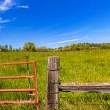 De weideboerderij van Californië in een blauwe dag van de hemellente Stock Foto