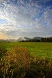 De weiden van de herfst in zonsondergangverticaal Stock Foto