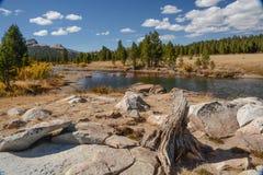 De Weiden van Tuolumne in Nationaal Park Yosemite royalty-vrije stock foto's