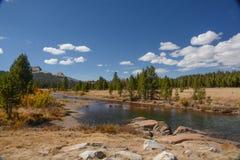 De Weiden van Tuolumne in Nationaal Park Yosemite stock afbeeldingen