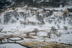De weiden van Ulanbuh in de winter Stock Fotografie