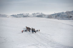 De weiden van Ulanbuh in de winter Stock Afbeeldingen