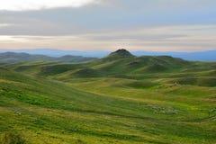 De weilanden van het de zomerpaard in de bergen Royalty-vrije Stock Foto's