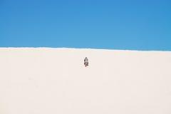 De weinig Sahara stock fotografie
