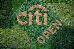 De welkom kunst in Citi opent 2015 Stock Foto's